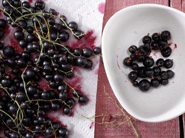 Смородину вымыть - Снять ягоды с веточек