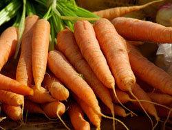 смесь сельдерея, моркови и лука 1
