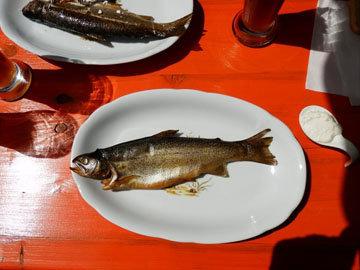 Рыба на гриле приготовлена