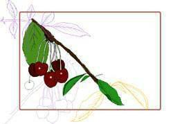 Этикетки для банок вишня