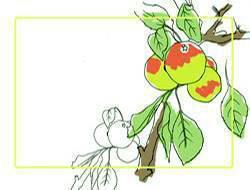 Этикетки для банок яблоки
