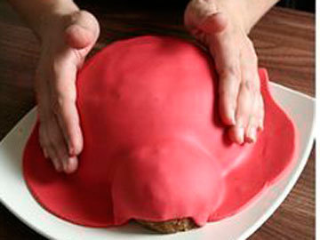 Торт Божья коровка 4