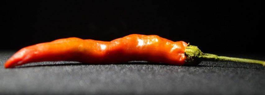 Slider chilli
