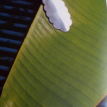 банановые листы