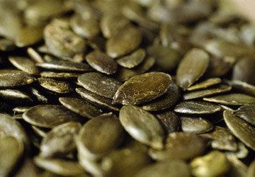 Полезные свойства тыквы проявляются в семечках