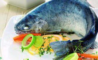 Блюда из форели - форель голубая. Праздничный стол на Рождество 2015