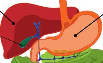 Диета 5п при хроническом панкреатите