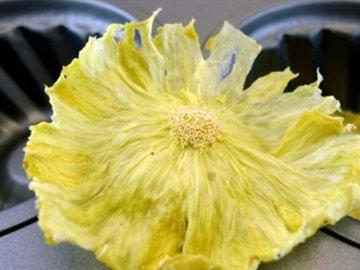 Украшение Ананасовые цветы