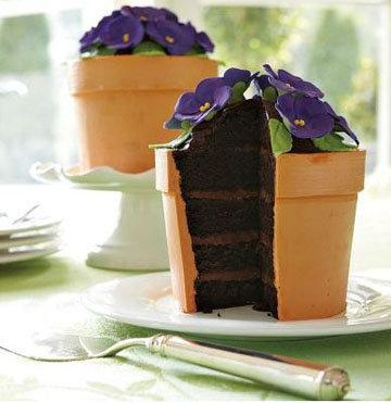Торт Цветочный горшочек 2