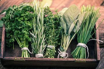 25. Как сохранить травы свежими