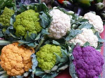 распространены фиолетовые и зеленые культурные формы