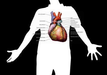 Общая характеристика диеты 10А