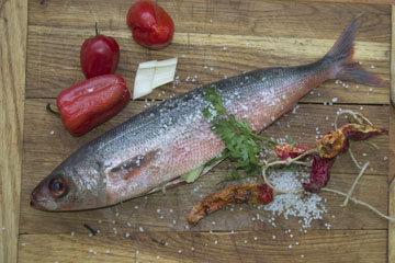 сорта речной и морской рыбы
