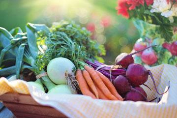 Овощные блюда рецепты