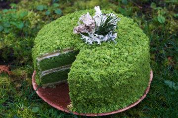 Зеленый торт с крапивой Изумрудный 1